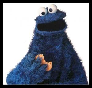 cookie-monster-costume-for-all-ages